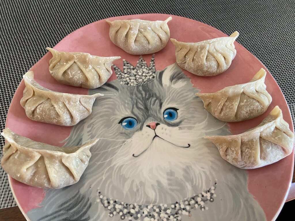 dumplings made by Rescaler